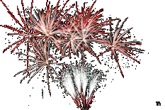 Fireworks display by Chrome Fireworks